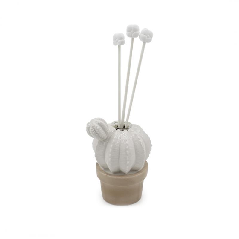 Cactus piccolo con profumatore